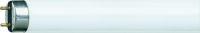 Tubo fluorescente lineare G13 18W 6500k TRIFOSFORI