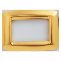 PLAYBUS YOUNG 3 GANG ANTIQUE GOLD PLATE