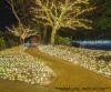 Lucciolone 40 led bianco luce fissa senza cavo bianco