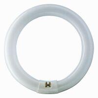 Lámparas fluo circolares G10q 22W standard 4300k