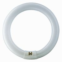 Tubo fluorescente circolare G10q 22W standard 4100k